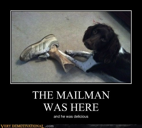 THE MAILMAN  WAS HERE