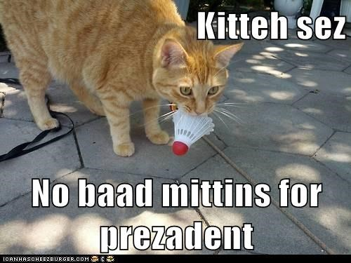 Kitteh sez  No baad mittins for prezadent