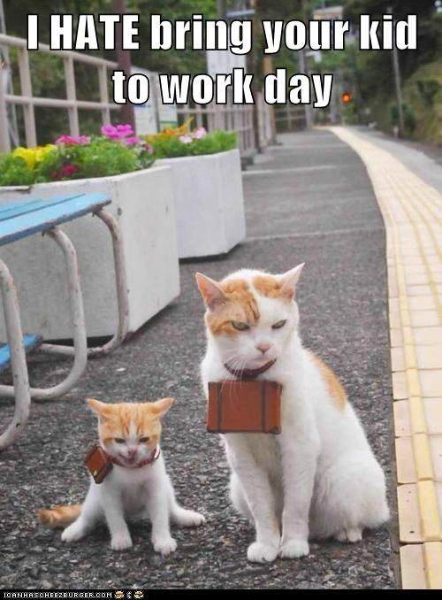 bring your kids to work d,bring your kids to work day,captions,Cats,child,hate,kid,work