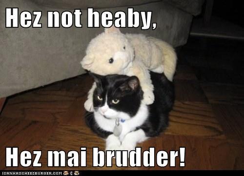 Hez not heaby,  Hez mai brudder!