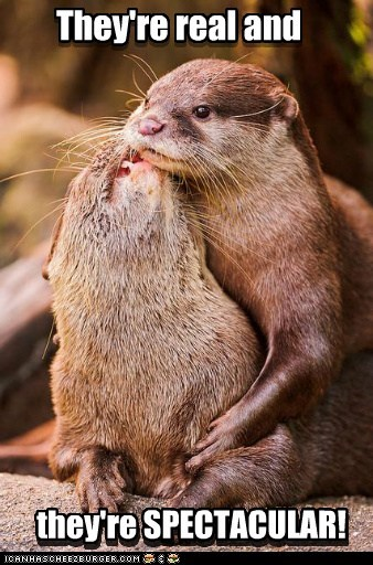 groping,otters,real,seinfeld,smiling,spectacular