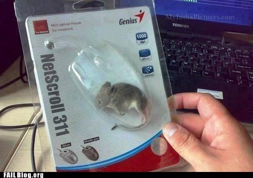 FAIL Nation: Mouse FAIL