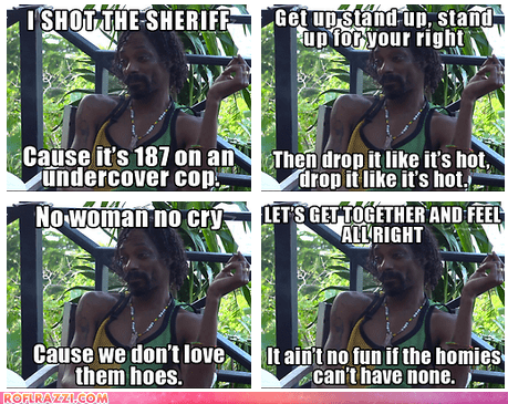 Potential Lyrics for the New Snoop Lion Album