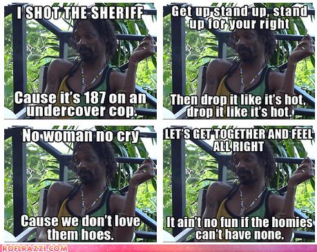 Potential Lyrics for the New Snoop Lion Album