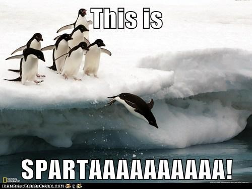 This is  SPARTAAAAAAAAAA!