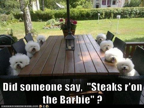 "Did someone say,  ""Steaks r'on the Barbie"" ?"