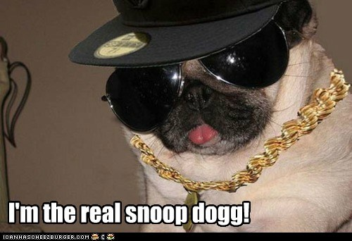 I'm the real snoop dogg!