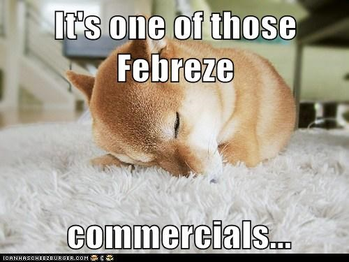 It's one of those Febreze   commercials...