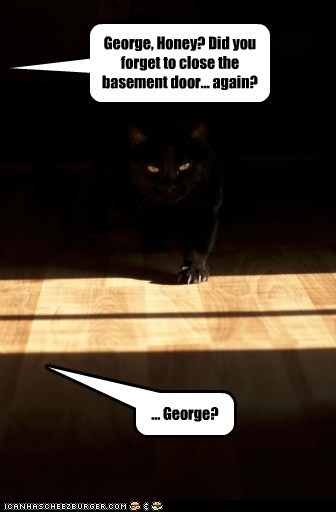 attack,basement,basement cat,captions,Cats,door,evil,George,honey,sneak