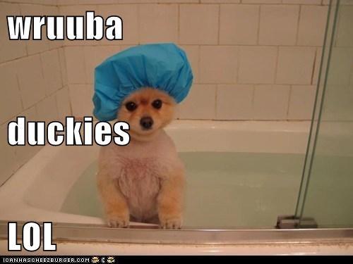 wruuba duckies LOL