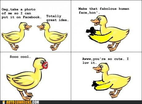 duck face,ducks,human face,pictures