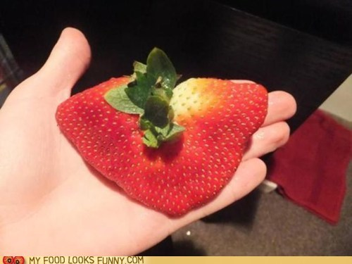 crazy,flat,huge,strawberry,weird