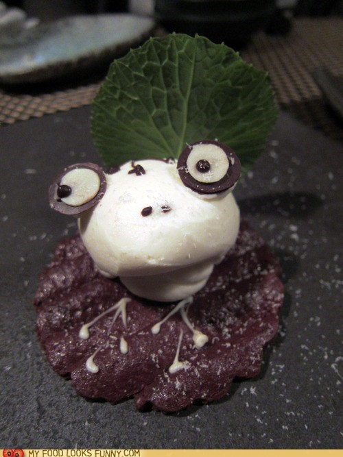 cheesecake,chocolate,face,frog