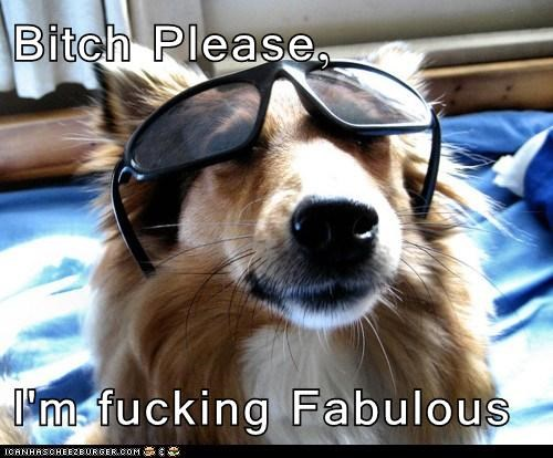Bitch Please,  I'm fucking Fabulous