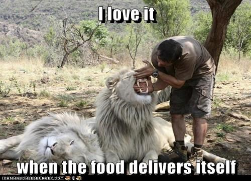 delivery,eating,food,i love it when,lion,lucky,teeth