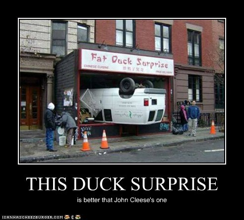 THIS DUCK SURPRISE