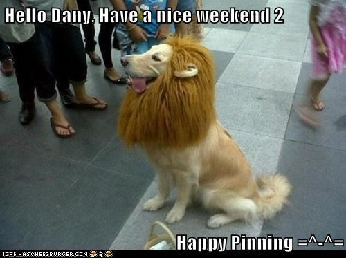 Hello Dany, Have a nice weekend 2  Happy Pinning =^-^=