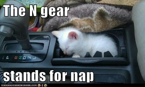The N gear  stands for nap