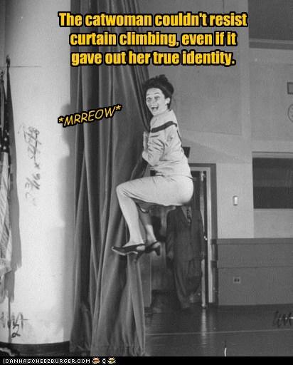 catwoman,climb,curtain,secret identity