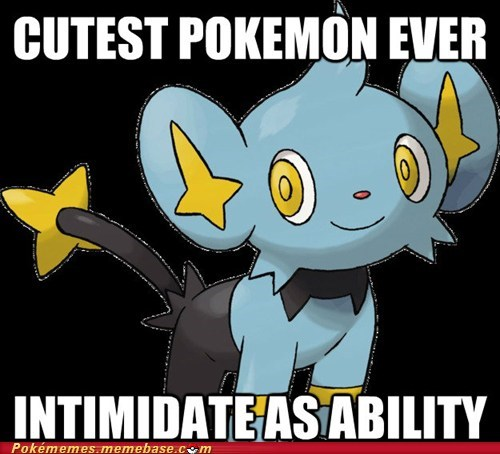 ability,cute,intimidate,Memes,pokemon logic,shinx