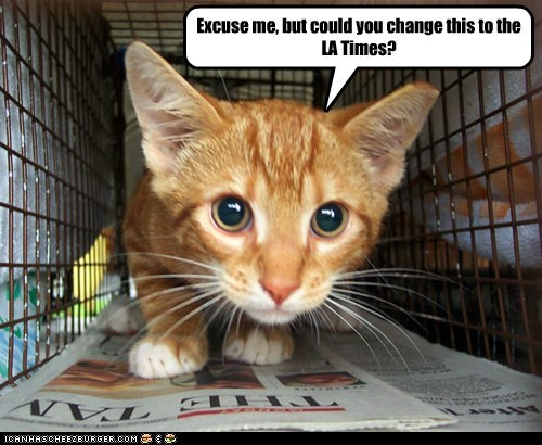 cage,captions,Cats,liner,newspaper,read