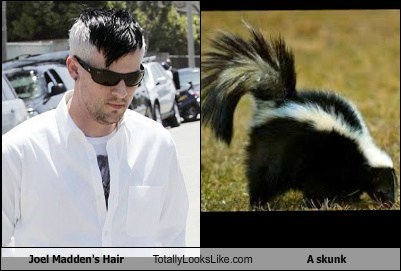 Joel Madden's Hair Totally Looks Like a Skunk