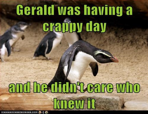 angry,bad day,bad mood,crappy,dont-care,hunched over,knew it,penguins