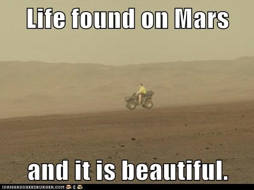 Life found on Mars  and it is beautiful.