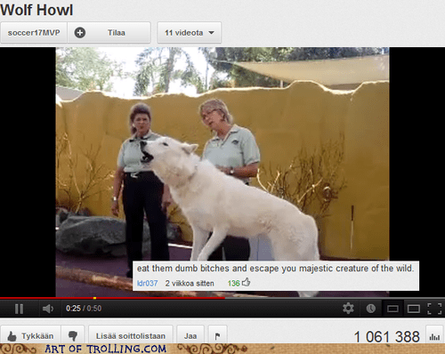 domesticated,top comment,wolf,youtube