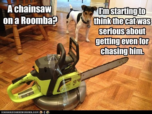 basement cat,cat,chainsaw,dogs,getting even,jack russell terrier,revenge,roomba