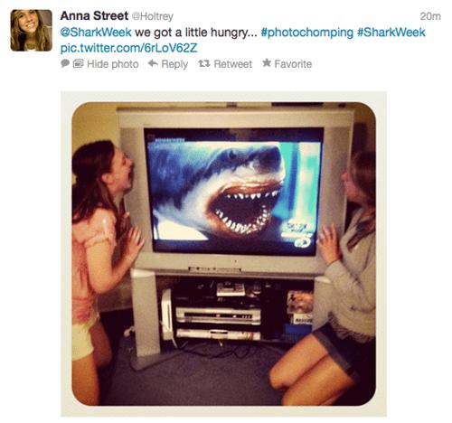 discovery channel,photochomping,shark week,shark week shenanigans,twitter pics