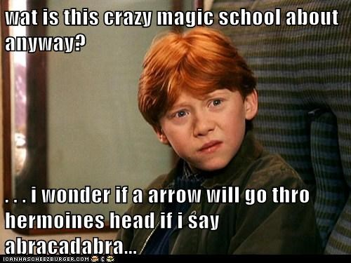wat is this crazy magic school about anyway?  . . . i wonder if a arrow will go thro hermoines head if i say abracadabra...