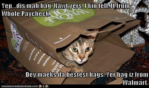 Yep...dis mah bag. Nawt yers. I kin tell. It frum Whole Paycheck.  Dey maeks da bestest bags. Yer bag iz from Walmart.
