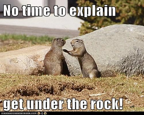 No time to explain  get under the rock!
