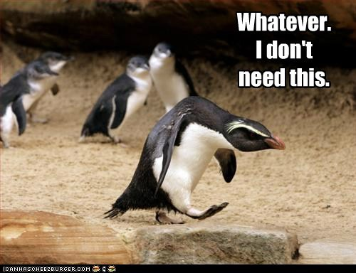 angry,bitter,hunched,i-dont-need-you,penguin,whatever