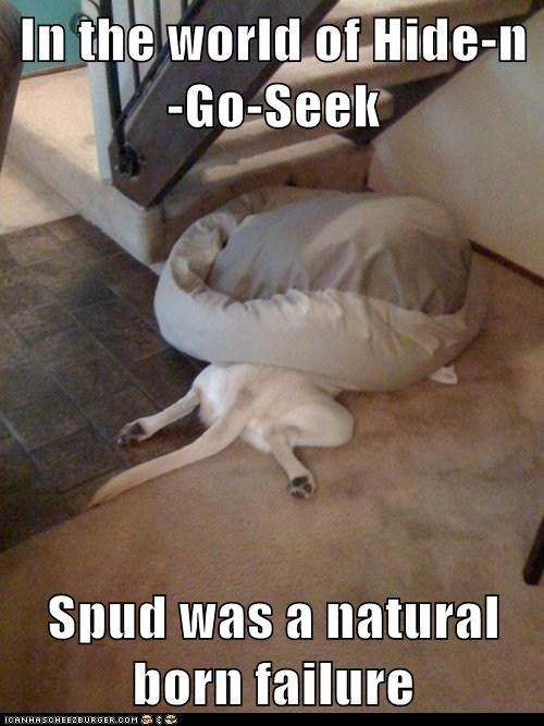 In the world of Hide-n-Go-Seek  Spud was a natural born failure