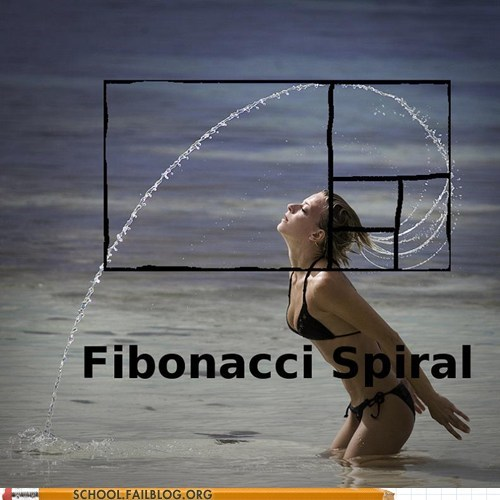 fibonacci spiral,geometry,hair flip,math