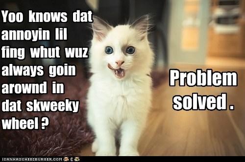 captions,Cats,eat,hamster,nom,problem,problem solved,wheel