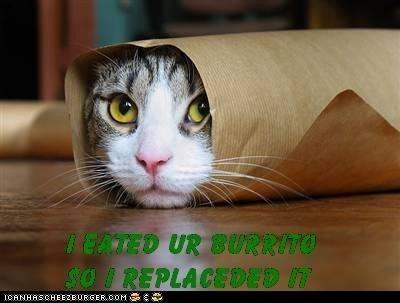 I eated ur burrito