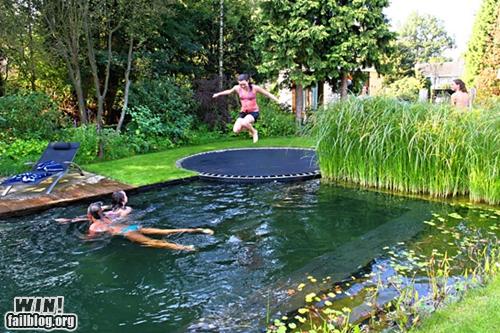 death trap,pool,toy,trampoline,whee