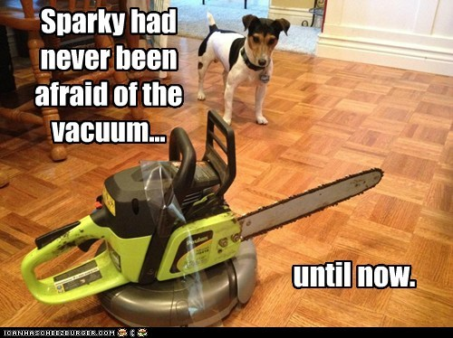 Sparky had never been afraid of the vacuum...