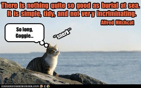 Lolcats: There is nothing quite so good as burial at sea.