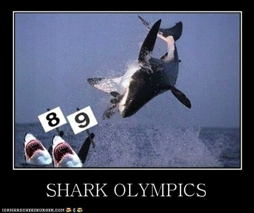 captions,judges,jumping,olympics,shark week,sharks,water