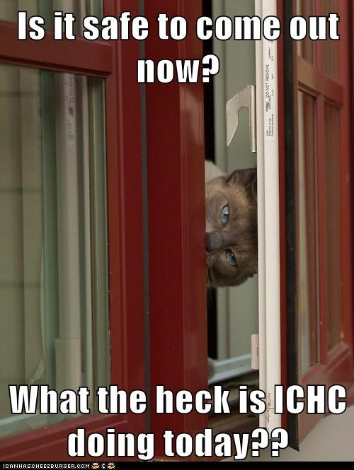 Is it safe to come out now?  What the heck is ICHC doing today??