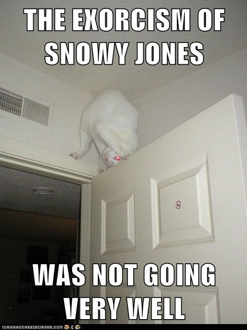 Lolcats: THE EXORCISM OF SNOWY JONES