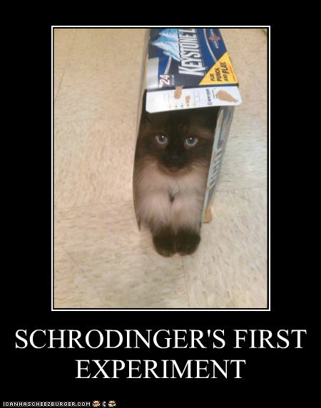 SCHRODINGER'S FIRST EXPERIMENT