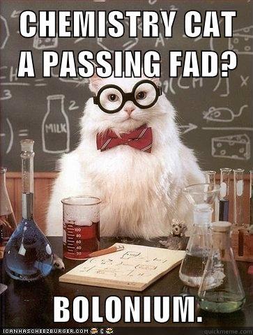 CHEMISTRY CAT A PASSING FAD?  BOLONIUM.