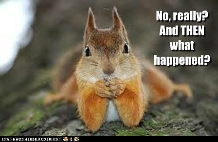captions,interested,really,squirrel,story,what happened