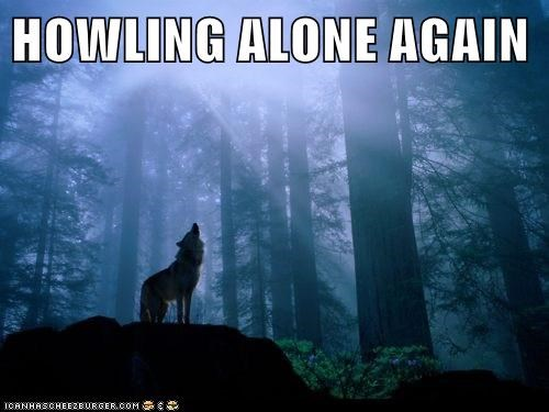 HOWLING ALONE AGAIN