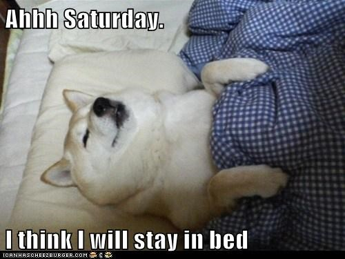 Ahhh Saturday.  I think I will stay in bed